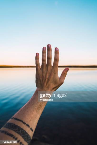 arm with tattoo reaching out at a lake - norrbotten province stock pictures, royalty-free photos & images