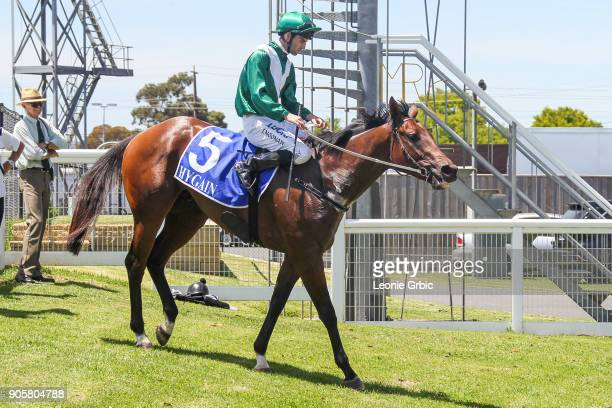 Armed And Ready ridden by Jake Noonan returns after winning the Helloworld Maiden Plate at Moe Racecourse on January 17 2018 in Moe Australia