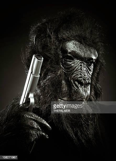 armed gorilla