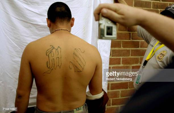 Armed police from Maryland's Prince George's County AntiGang Unit question and detain suspected gang members of Mara Salvatrucha 13 or MS13 April 20...