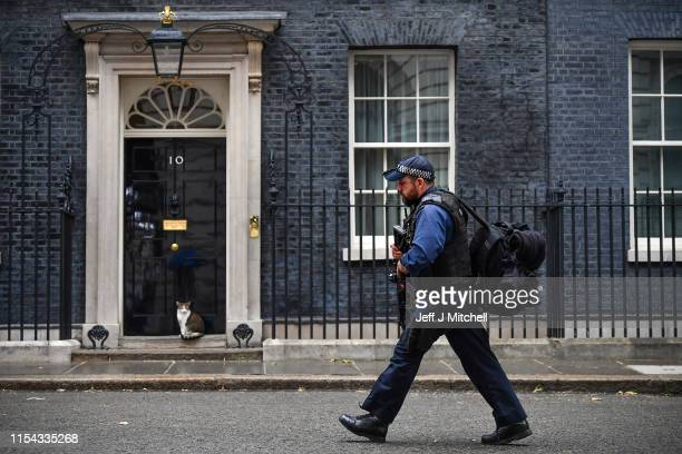 Armed police walk past Larry the Downing Street cat on June 7, 2019 in London, England. Today is Theresa May's last day as Conservative Party leader,...
