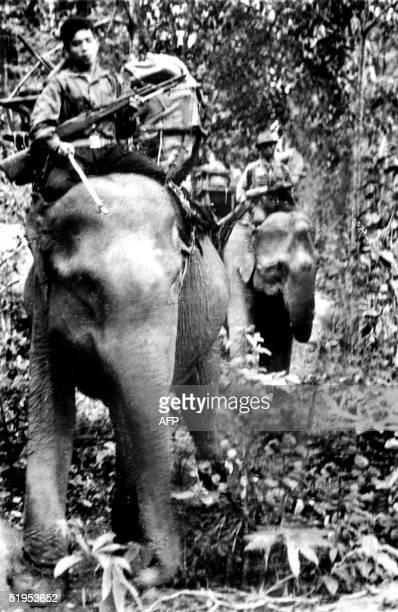 Armed Vietcong guerillas carry ammunition on elephant back through a South Vietnam high plateau forest 13 November 1969 during the Vietnam war // Des...