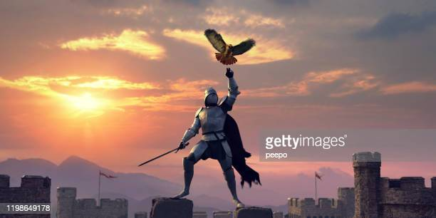 armoured knight standing on castle roof with bird of prey - warrior person stock pictures, royalty-free photos & images