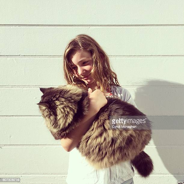 arms filled with cat - female hairy arms stock photos and pictures