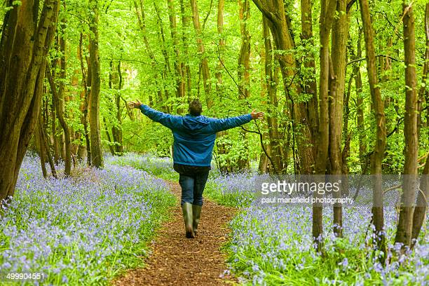 arms outsretched man in bluebell woods - bluebell wood stock pictures, royalty-free photos & images