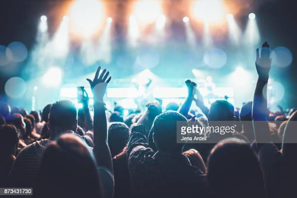 arms raised concert - crowd stock pictures, royalty-free photos & images