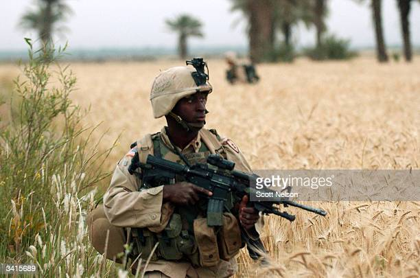 S Army foot soldiers from the 1st Battalion 14th regiment of the 25th Infantry Division advance through open fields during an operation against...