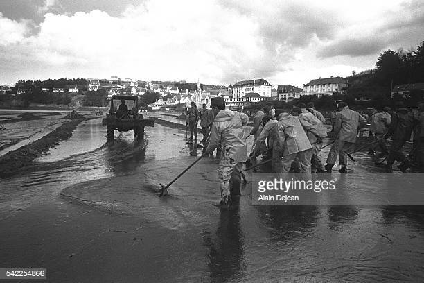 Army members come to the rescue of the Brittany beaches Here the cleaning of Perros beach