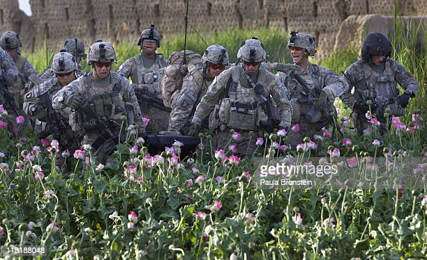 S Army soldiers carry an injured soldier who was shot in the leg through a poppy field on April 24 2011 in the Arghandab River Valley Kandahar...