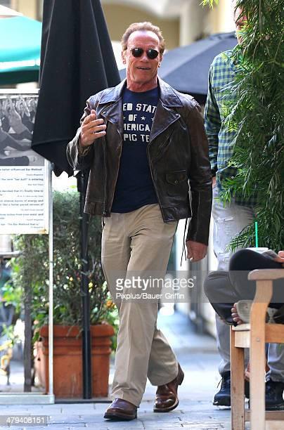 Arnold Schwarzenegger is seen on March 17 2014 in Los Angeles California