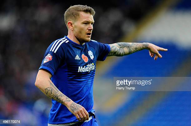 Aron Gunnarsson of Cardiff City during the Sky Bet Championship match between Cardiff City and Reading at the Cardiff City Stadium on November 7 2015...