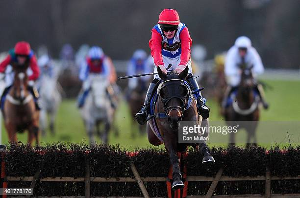 Aroseforoscar ridden by Ciaran Gethings clears the last to win The Haldon Handicap Hurdle Race at Exeter Racecourse on January 19 2015 in Exeter...