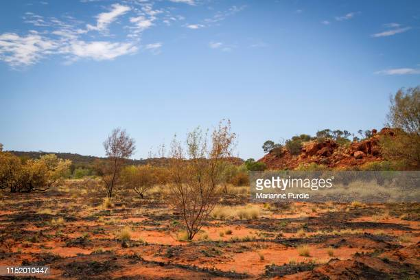 around alice springs - alice springs stock pictures, royalty-free photos & images