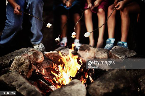 around the campfire - campfire stock pictures, royalty-free photos & images