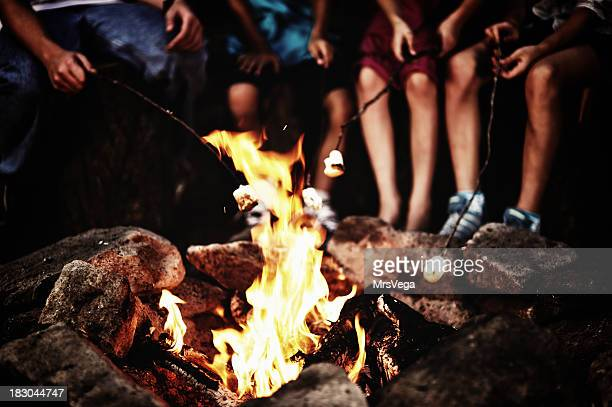 around the campfire - camp fire stock photos and pictures