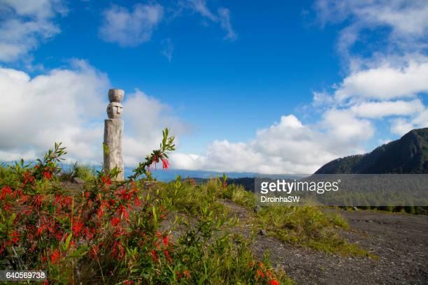 around  villarrica volcano, chile. - pucon fotografías e imágenes de stock