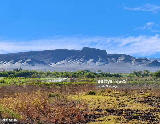 around viooldrift, orange river, south africa - ナマクワランド ストックフォトと画像