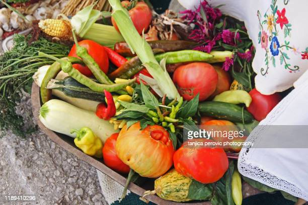 arranged organic vegetables - harvest festival stock pictures, royalty-free photos & images