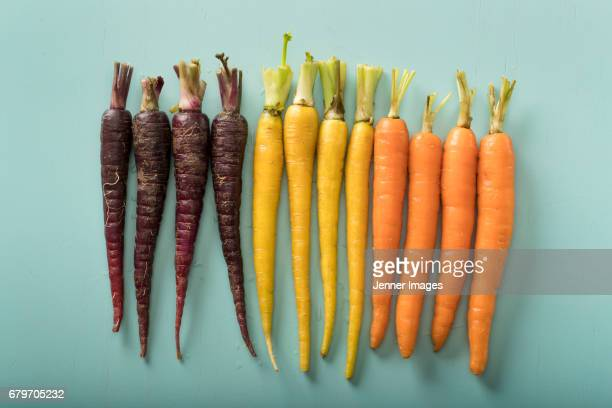 Arrangement of fresh Colourful Carrots.