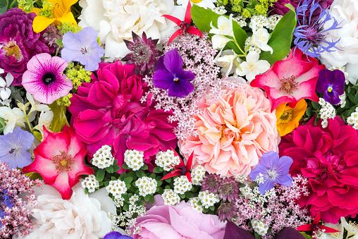 Arrangement of June garden flowers viewed from above - gettyimageskorea