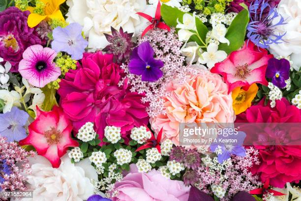 arrangement of june garden flowers viewed from above - motivo floreale foto e immagini stock