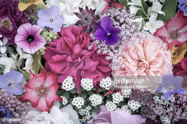 arrangement of june garden flowers viewed from above - colour manipulation stock pictures, royalty-free photos & images