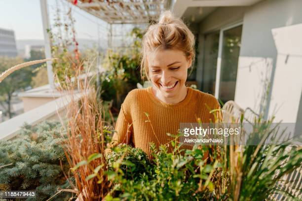 arranging my rooftop garden - balcony stock pictures, royalty-free photos & images