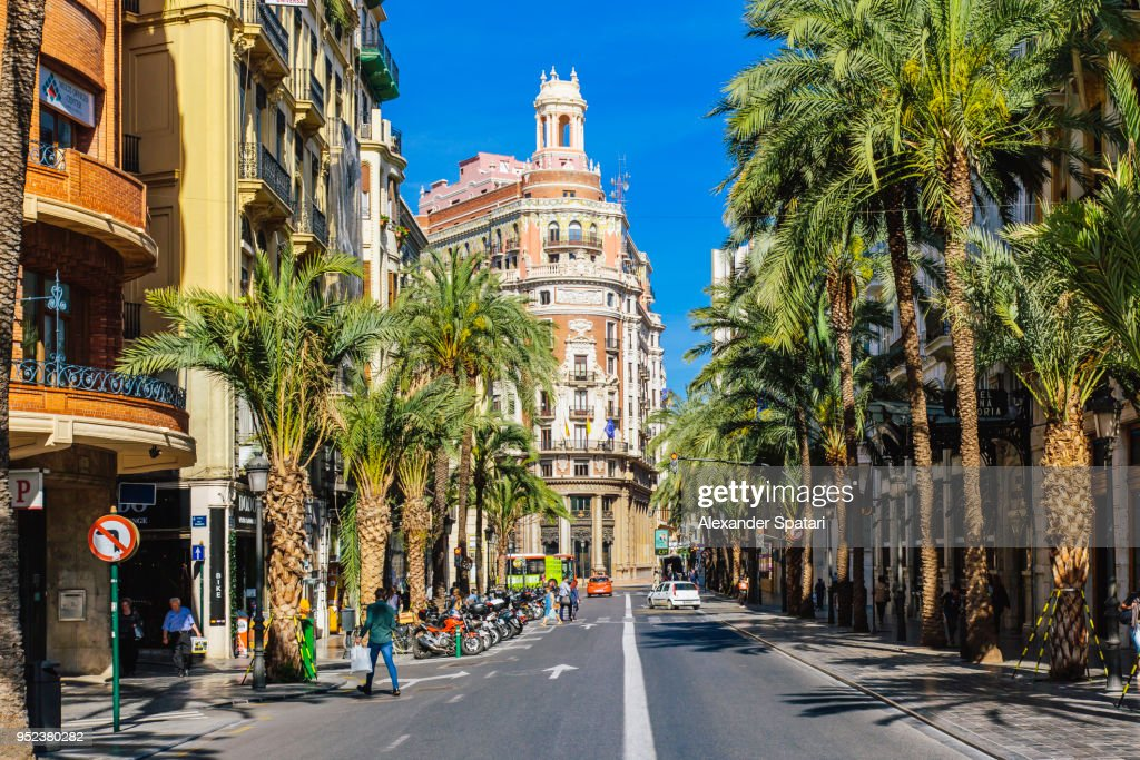 Сarrer de les Barques street with palm trees on a sunny day in Valencia, Spain : ストックフォト