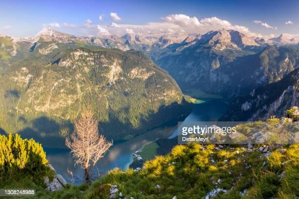arrial view to lake königssee in nationalpark berchtesgaden - oberbayern stock-fotos und bilder