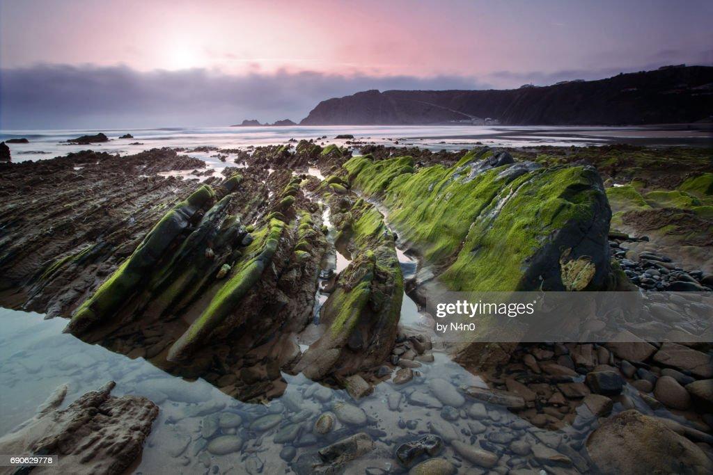 Arrifana beach : Stock Photo