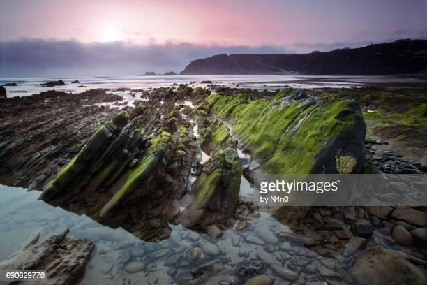 arrifana beach - waimea bay stock photos and pictures