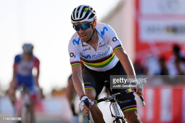 Arrival / Alejandro Valverde Belmonte of Spain and Movistar Team World Champion Jersey / Celebration / during the 5th UAE Tour 2019 Stage 3 a 179km...