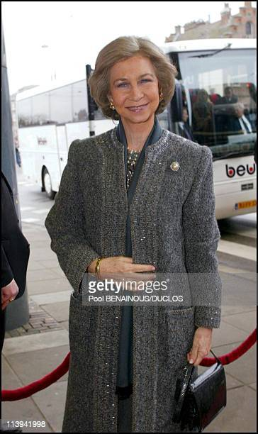 Arrival for Lunch concert 'Concertgebouw' in Amsterdam In Amsterdam Netherlands On February 01 2002Queen Sofia of Spain