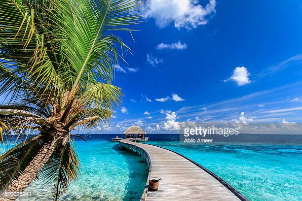 arrival jetty - dusit thani maldives - maldives stock pictures, royalty-free photos & images