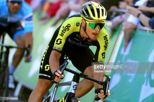 Arrival / Matteo Trentin of Italy and Team Mitchelton-SCOTT / Celebration / during the 16th Tour of Britain 2019, Stage 2 a 165,9km stage from Kelso...