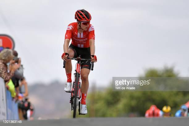 Arrival / Michael Storer of Australia and Team Sunweb / during the 22nd Santos Tour Down Under 2020, Stage 3 a 131km stage from Unley to Paracombe...