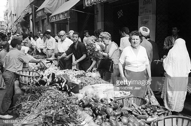 Arrival Of Ben Bella In Algiers Alger 4 Août 1962 L'arrivée et l'installation d'Ahmed BEN BELLA chef du FLN avec le Comité Politique au marché devant...