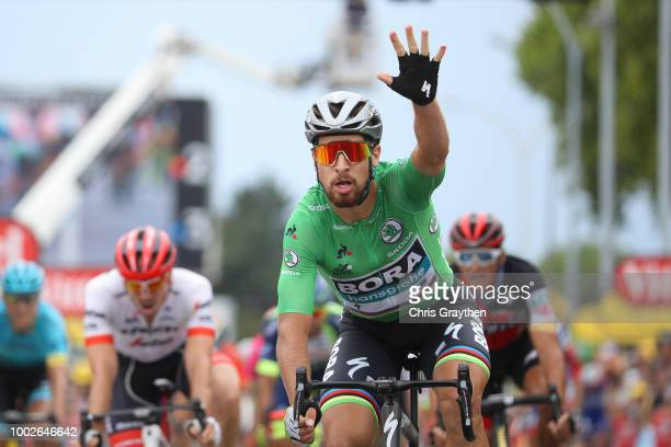 Arrival / Peter Sagan of Slovakia and Team Bora Hansgrohe Green Sprint Jersey / Celebration / during the 105th Tour de France 2018, Stage 13 a...