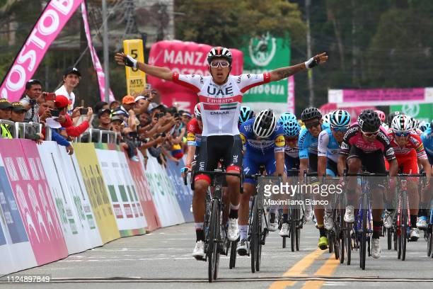 Arrival / Sebastián Molano of Colombia and Uae Team Emirates Celebration / Julian Alaphilippe of France and DeceuninckQuickstep Team / Bob Jungels of...
