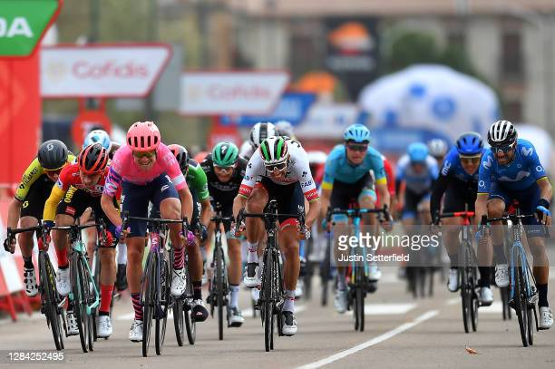 Arrival / Sprint / Magnus Cort Nielsen of Denmark and Team EF Pro Cycling / Dion Smith of New Zealand and Team Mitchelton - Scott / Primoz Roglic of...