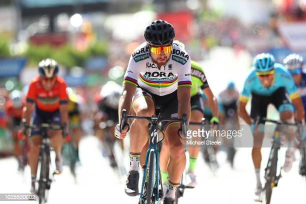 Arrival Sprint / Peter Sagan of Slovakia and Team Bora Hansgrohe / during the 73rd Tour of Spain 2018 Stage 7 a 1857km stage from PuertoLumbreras to...