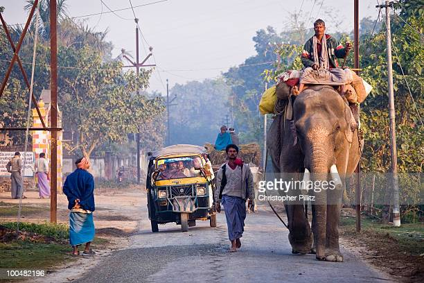 Arriving at the Sonepur animal fair, Patna, Bihar