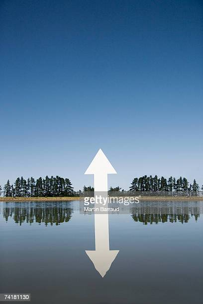 Arrow emerging from water with trees