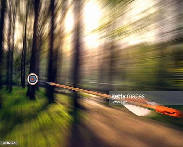 Arrow shooting through forest