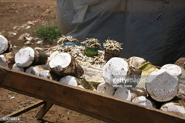 Arrowroot for sale outside in front of a familys shack in the hopes of making a living and being able to support their families More than half of the...