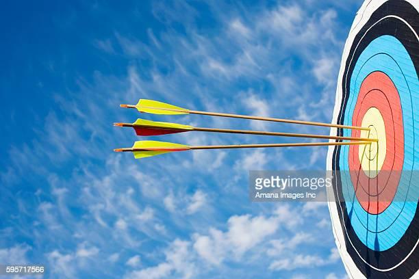 Arrows in Bulls eye of Target
