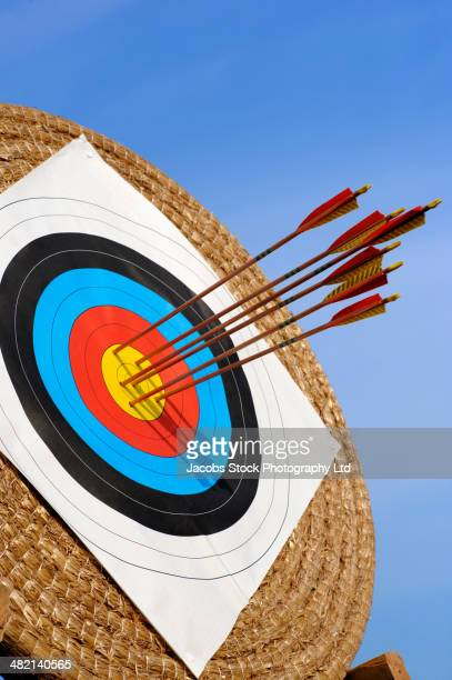 Arrows lodged in bull's-eye