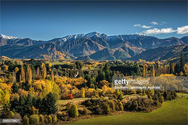 arrowtown autumn - arrowtown stock pictures, royalty-free photos & images