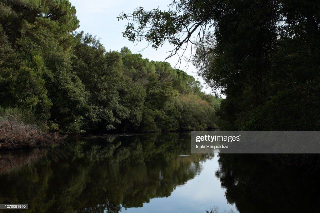 Arroyo del Bejarano : Foto de stock
