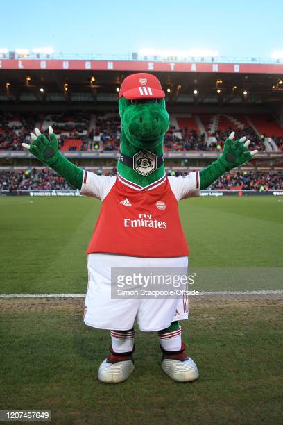 Arsenal mascot Gunnersaurus looks on before the FA Women's Continental League Cup Final between Chelsea FC Women and Arsenal FC Women at the City...